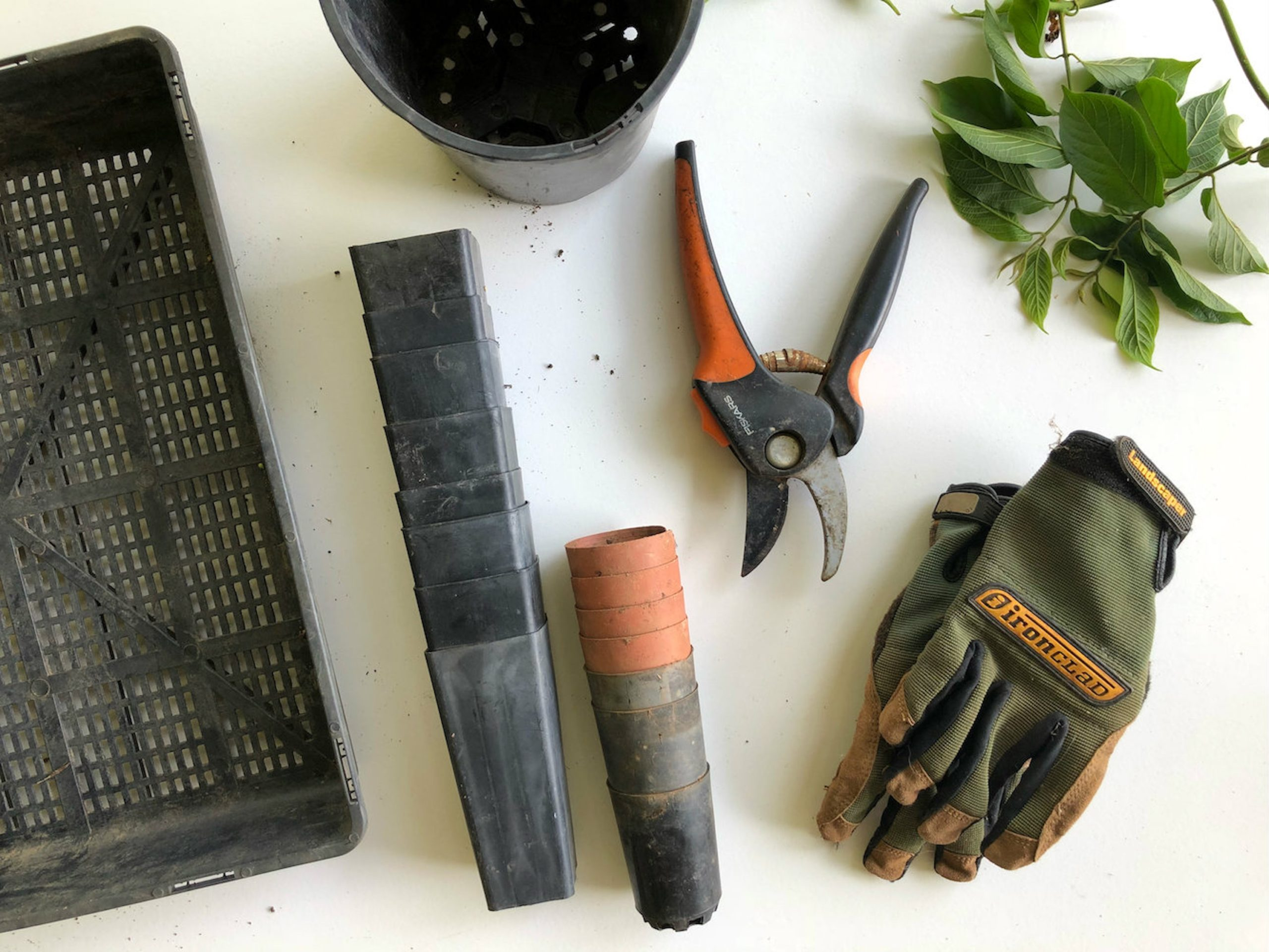 garden-and-hedge-cutting-tools-scaled