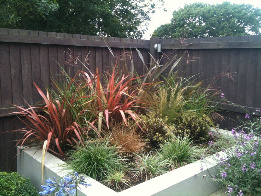 raised-flower-bed-with-naturally-messy-looking-plants
